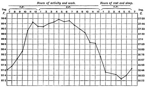 Graphique illustrant la variation de la température corporelle au cours d'une journée